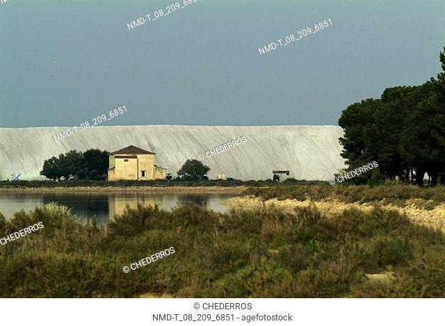 Farmhouse in a field, Provence, France