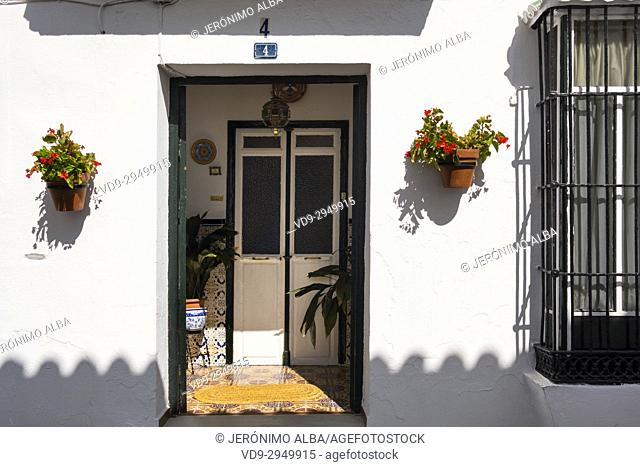 Typical entrance to a house & flower pot, white village Mijas. Málaga province Costa del Sol, Andalusia. Southern Spain Europe