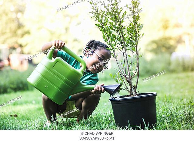 Girl watering plant in parkland eco camp