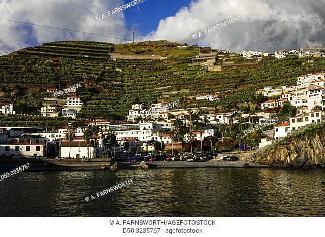 Camara do Lobos, Madeira, Portugal The small harbour