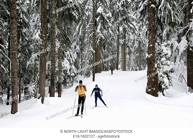 Canada, BC, Vancouver Cypress Mountain.  Two men skate skiing in Nordic ski area