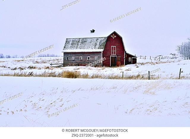 An image of an old red barn built in 1933 sits on a snow covered abandoned farm in rural Alberta Canada