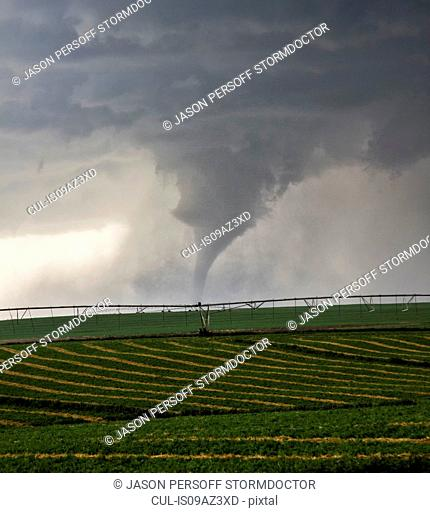 Large tornado descends over farmland