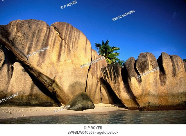 tropical sand beach, with big, smooth rocks and palmtrees, Seychelles, La Digue, Pointe Source d'Argent