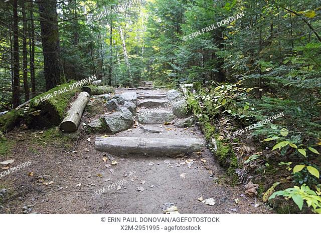 Natural looking stone steps along Zealand Trail in Bethlehem, New Hampshire USA during the autumn months