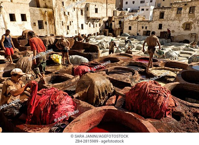 Workers at the Chouwara Tannery, Fez or Fes, Morocco, North Africa