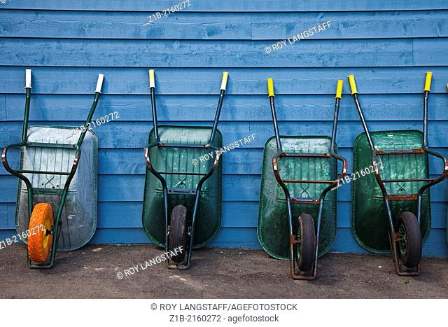 A line of wheelbarrows for boat owners to use for carrying provisions along the dock of a marina