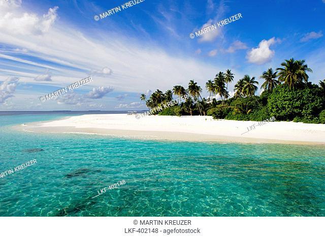 Beach with palm trees in the sunlight, Park Hyatt Maldives Hadahaa, Gaafu Alifu Atoll, North Huvadhoo Atoll, Maldives