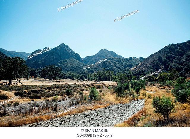 Tree covered mountains, Malibu, California, USA