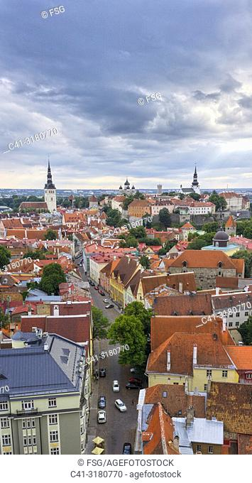 Old town . Tallinn. Estonia