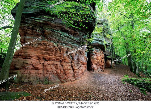 Altschlossfelsen, natural monument, Palatinate Forest, Eppenbrunn, Rhineland-Palatinate, Germany