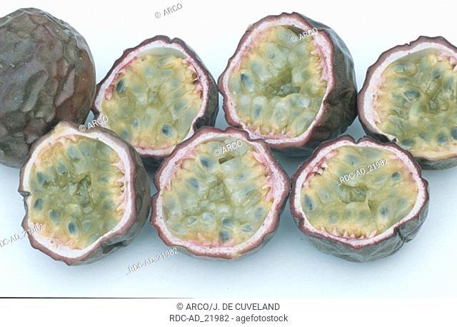 Passions Fruits Passiflora edulis