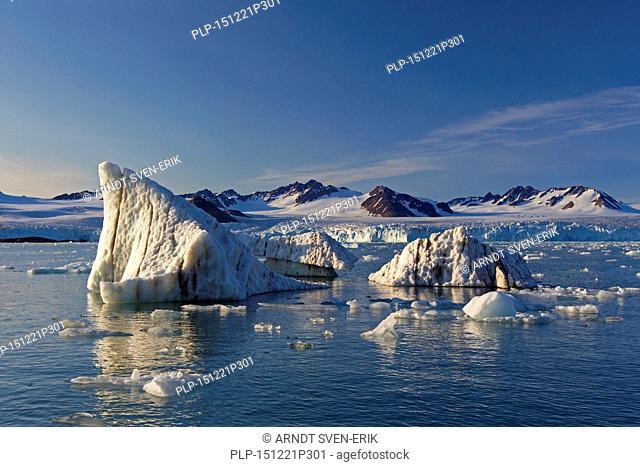 Calved ice floes from the Lilliehöökbreen glacier drifting in the Lilliehöökfjorden, fjord branch of Krossfjorden in Albert I Land, Spitsbergen, Svalbard