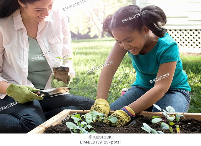 Mixed race mother and daughter gardening together in backyard