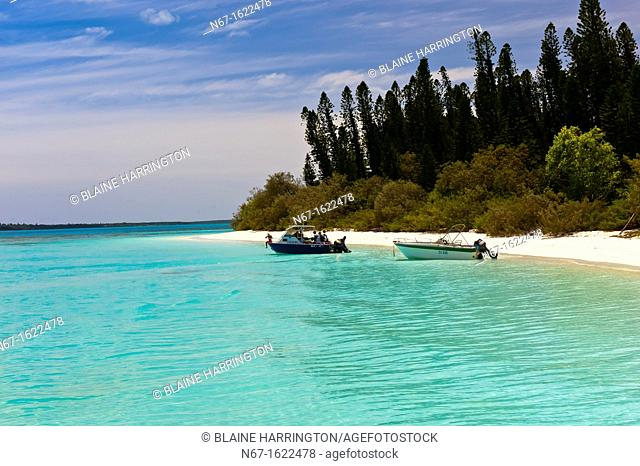 Brush Island, New Caledonia Barrier Reef off Ile des Pins Isle of Pines, New Caledonia