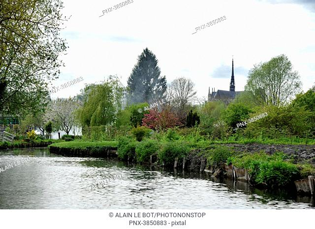 France, region of Hauts de France, Somme department, city of Amiens, floating gardens les Hortillonnages, the Notre-Dame cathedral at the back