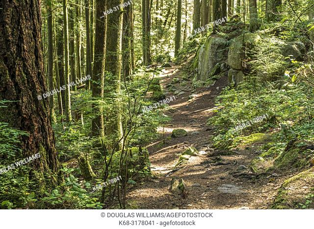 Cypress Creek Park in West Vancouver, BC, Canada