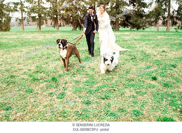 Portrait of bride and bridegroom with their dogs