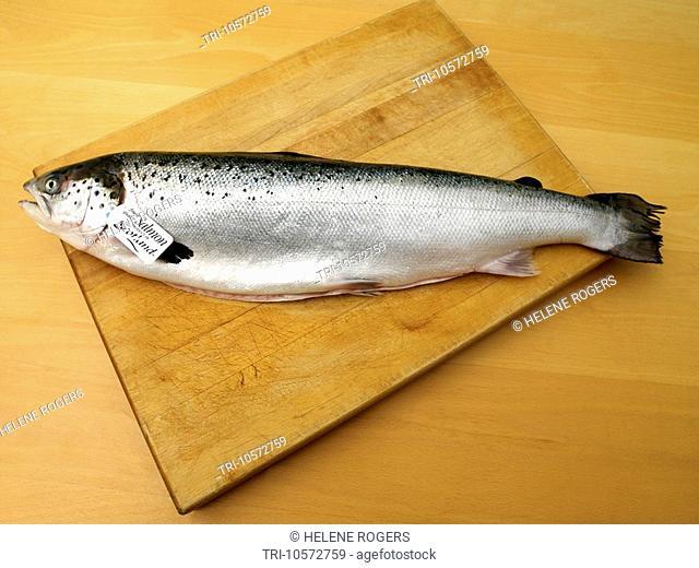 Scottish Salmon on Wooden Board