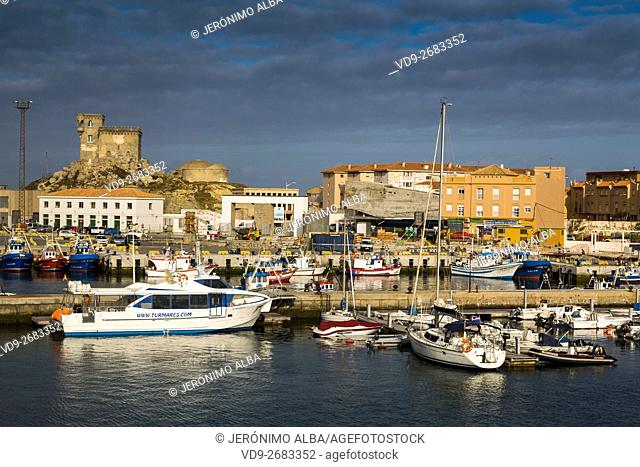 Boats in the fishing port of Tarifa, Costa de la Luz, Cadiz province, Andalusia, Spain Europe