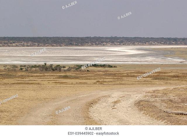 African landscape: lake Ndutu almost dry at the Serengeti National Park, Tanzania