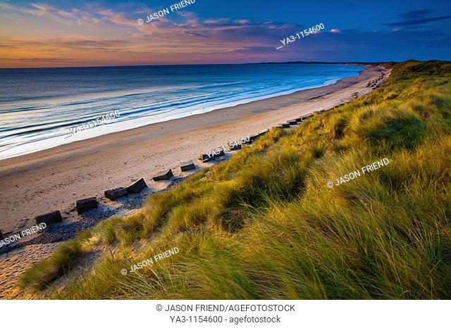 England, Northumberland, Druridge Bay  A dramatic expanse of sand dunes fringing the picturesque beach at Druridge Bay, viwed shortly after sunrise
