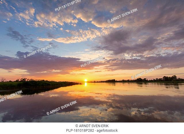 Oderbruch, moorland landscape and the river Oder at sunset near Oderberg, Brandenburg in eastern Germany