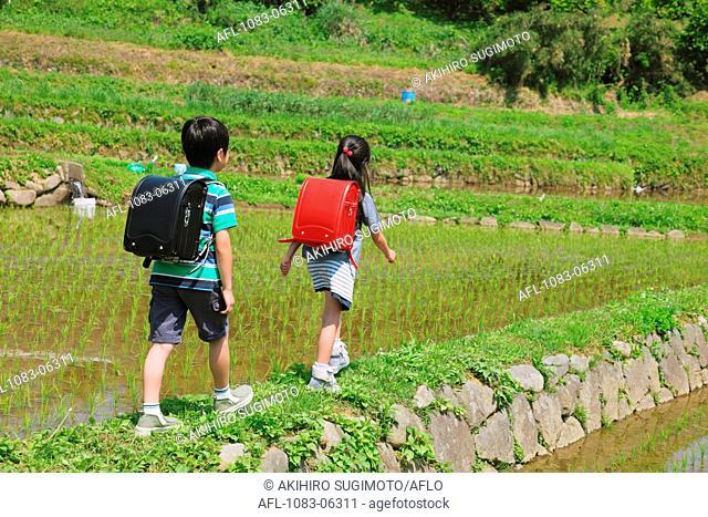 School Kids Walking On Track