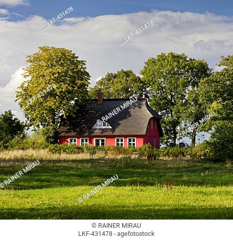 House with thatched roof, Putgarden, Kap Arkona, Ruegen, Mecklenburg-Western Pomerania, Germany