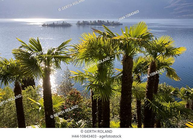 Switzerland, Europe, Ronco, Lake Maggiore, Canton Ticino, Water, Landscape, Nature, Scenic, scenery, landscape, View