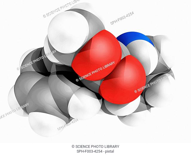 Ritalin molecule. Computer model of a molecule of the stimulant drug methylphenidate, marketed as Ritalin. Atoms are represented as spheres and are colour-coded