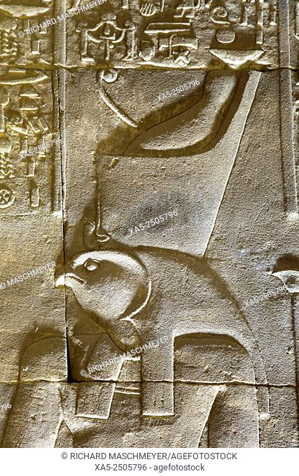 Relief Depicting the God Horus, Temple of Horus, Edfu, Egypt