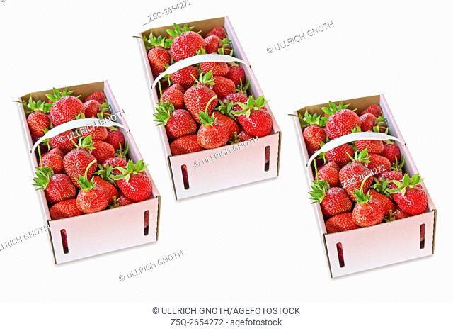 Three baskets of freshly picked-up strawberries, isolated on white, montage