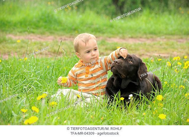 child and Labrador Retriever