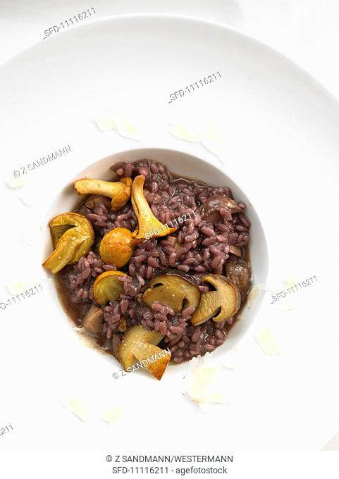Wild mushroom risotto with red wine