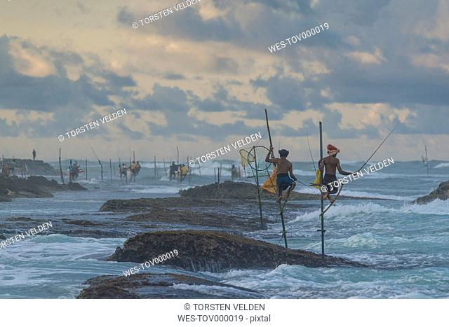 Sri Lanka, Galle, stilt fishermen