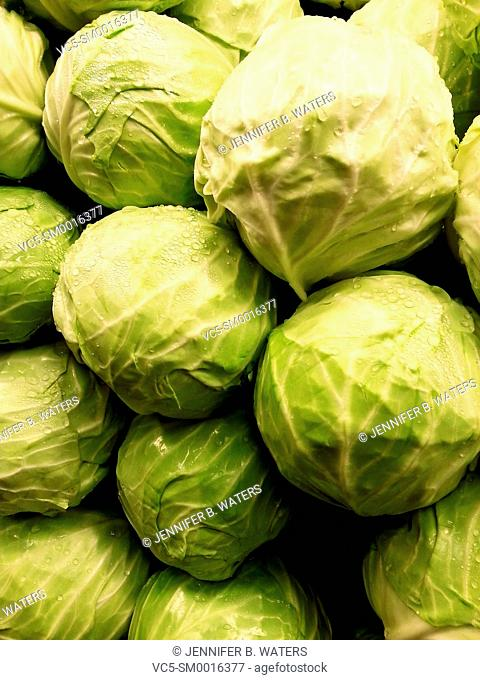 Cabbages at the market in Washington State, USA. Brassica oleracea var. capitata