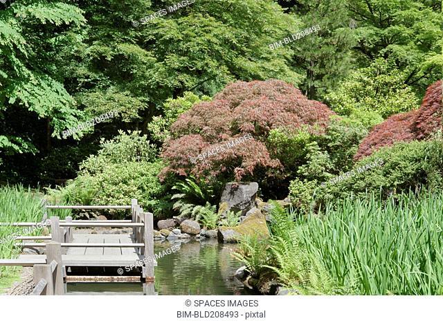 Koi pond around the Zig Zag Bridge in the traditionally designed Japanese garden