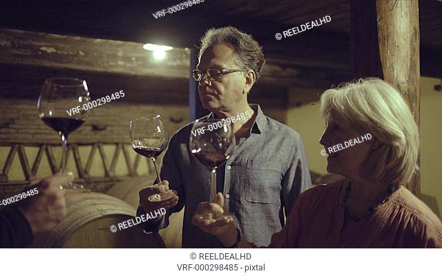 Senior couple at a wine tasting