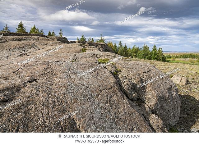 Roche moutonnee -rock formation created by the passing of a glacier. Passage of glacier ice over underlying bedrock often results a Glacial striae
