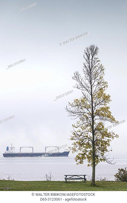 Canada, Quebec, Mauricie Region, Grondines, freighter on the St. Lawrence River in fog, autumn