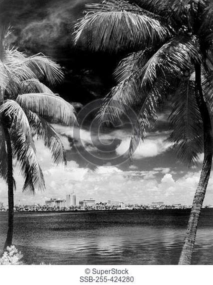 USA, Florida, Skyline of Palm Beach