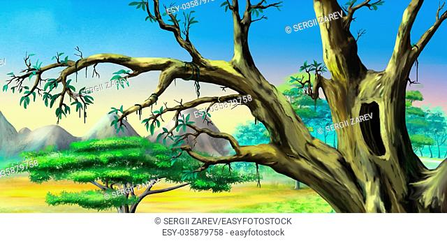 African Tree with Big Hollow against Blue Sky in a African national park. Digital Painting Background, Illustration in cartoon style character