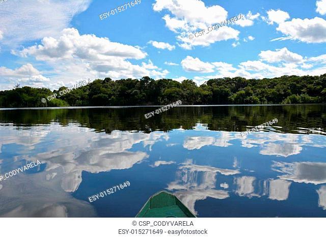 The Amazon 2