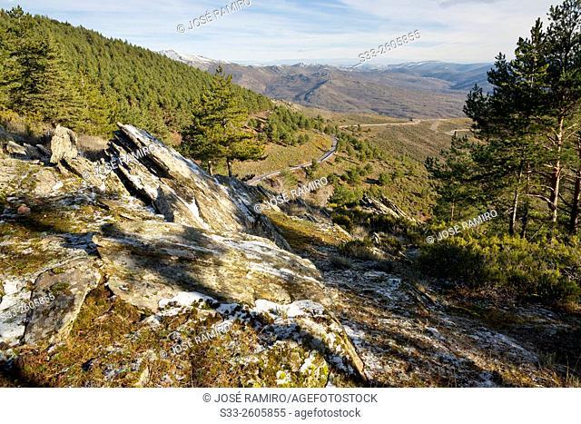 M-137 road to the Hiruela in the Sierra Norte. Madrid. Spain. Europe