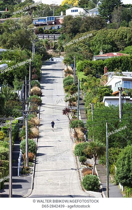 New Zealand, South Island, Otago, Dunedin, Baldwin Street, world's steepest residential street