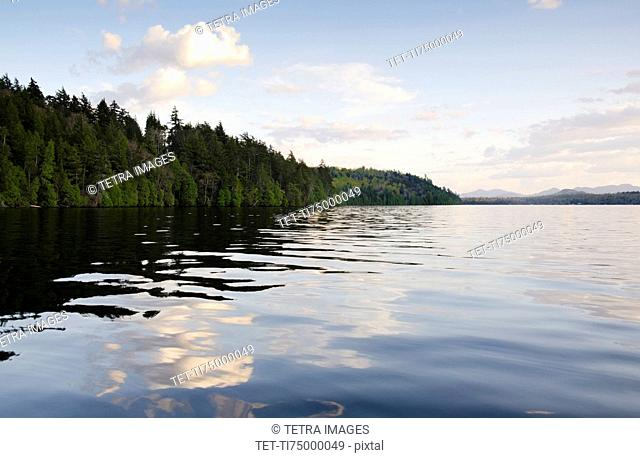 Clouds and forest reflecting in lake