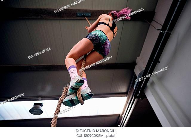 Young woman training, climbing up exercise rope in gym, low angle view