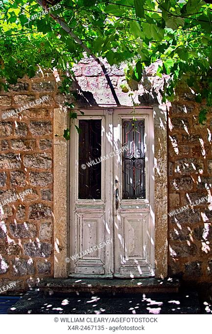 Old doorway with a vine canopy in the walled city of Budva, Montenegro