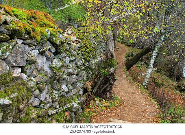 A twisty path leads to the El Purgatorio falls, through the Aguilón river gorge in the high Lozoya Valley, Rascafría (Madrid)